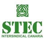 cropped-logo-vertical-verde-stec-ic_vectorizado.jpg