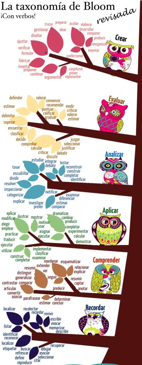 Taxonomía_BLOOM.jpg