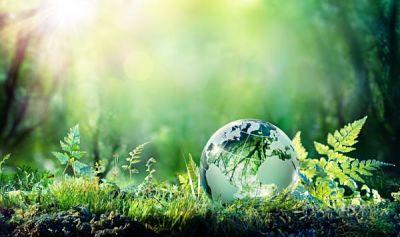 por_que_se_celebra_el_dia_mundial_del_medio_ambiente_1775_600_opt